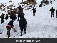 1 Armyman Killed, 5 Trapped After Avalanche In Himachal Pradesh: Report