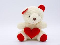 Teddy Day 2020: टेडी डे पर अपने पार्टनर को इन मैसेज से करें Wish और देना न भूलें खूबसूरत सा Teddy Bear