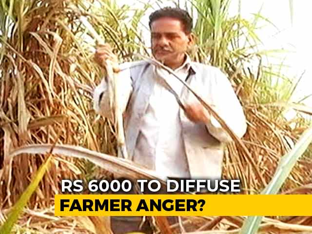 Video : Farmers In UP, Punjab Find Government's Budget Announcement Inadequate
