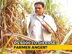 Video: Farmers In UP, Punjab Find Government's Budget Announcement Inadequate