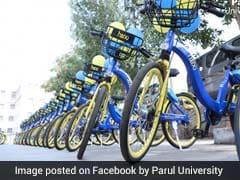 University In Gujarat Bans Petrol, Diesel Vehicles To Curb Pollution