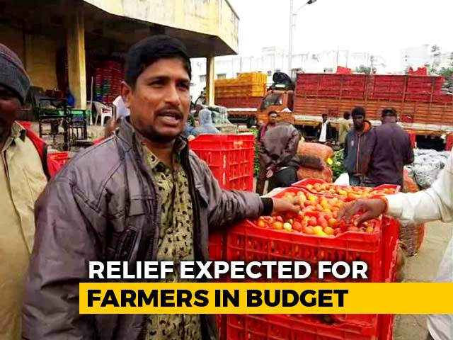 Video : In Budget 2019, Farmers Hopeful For Loan Waiver, Direct Cash Transfer