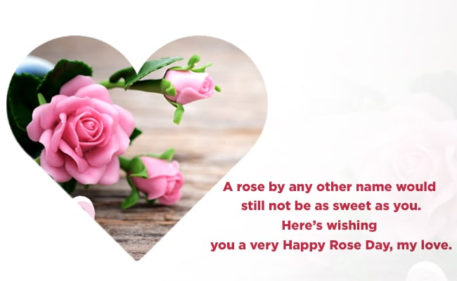 Happy Rose Day 2019 Rose Day Images Quotes Whatsapp Messages