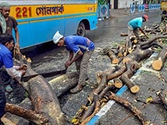 3 Dead As Storm Hits South Bengal, Several Trees Uprooted In Kolkata
