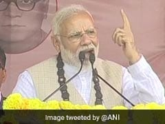 """<i>Didi</i> Scared Of Your Love For Us"": PM Modi's Jab At Mamata Banerjee"