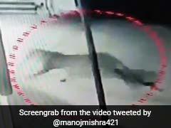 CM के घर के पास दिखा तेंदुआ, लोगों ने देखा तो फैली दहशत, वायरल हुआ VIDEO