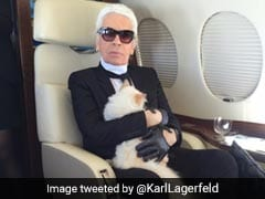 Legendary Chanel Designer Karl Lagerfeld Dies At 85