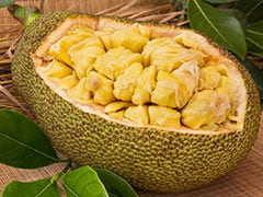 """Spectacularly Ugly"", ""Pest-Plant"": British Daily's Article On Jackfruit Irks Indian Twitterati"