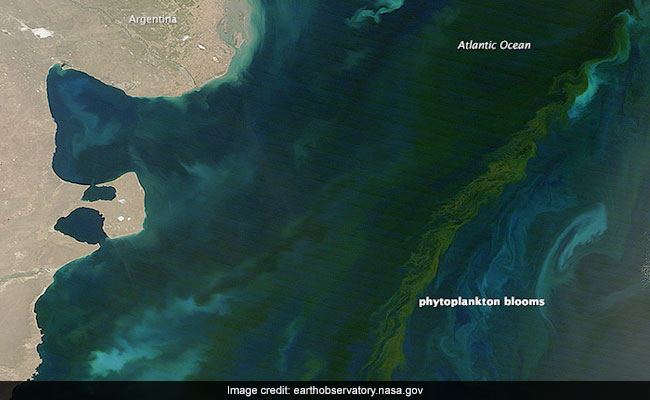 Climate Change Will Alter The Colour Of The Oceans, New Research Finds
