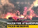 Video : Major Fire Breaks Out At Bandipur Tiger Reserve In Karnataka