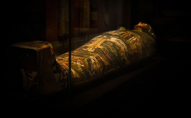 40 Mummies, Including Of Children And Animals, Found In Egypt