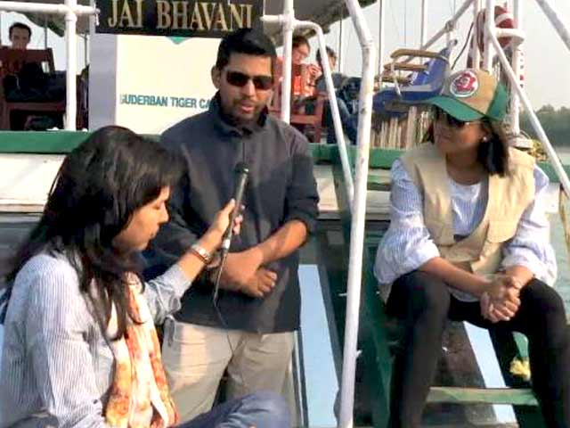 Video : Will The Number Of Sundarban Tigers Rise?