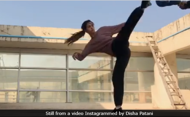 Disha Patani's Latest Parkour Video Is The Fitness Inspo You Need Right Now