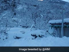 Snowfall In Manali, Dalhousie; Rain In Most Parts Of Himachal