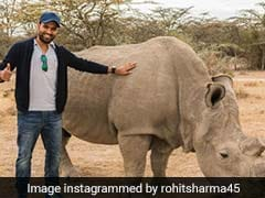 """World Wildlife Day: Rohit Sharma Vows To Speak Up For Those Who """"Don't Have A Voice"""""""
