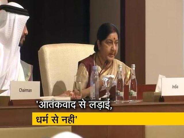 Video : आतंकवाद से दुनिया को खतरा: सुषमा स्वराज