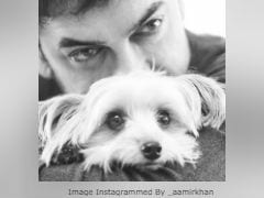 Aamir Khan's First Insta Post In A Month Is Of Himself And Adorable Pooch Imli