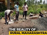 Video : As Rural Jobs Vanish, Maharashtra Farm Workers Head For Greener Pastures