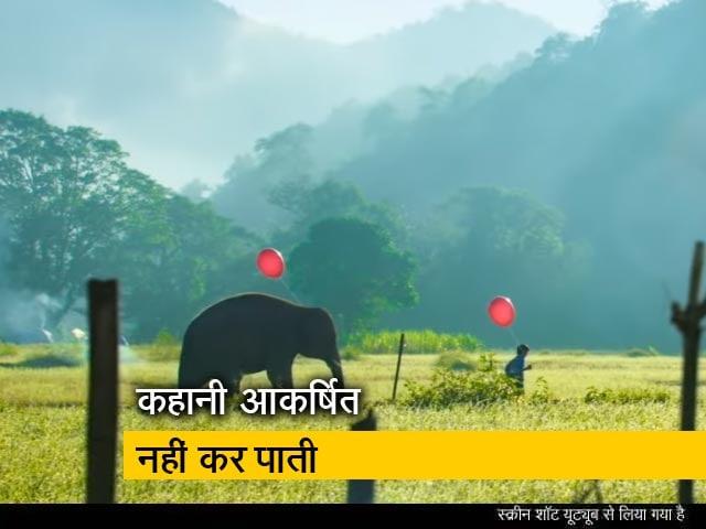 Video : फिल्म रिव्यू : जानिए कैसी है विद्युत जामवाल की 'जंगली'