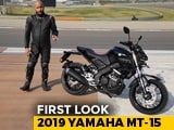 Video : 2019 Yamaha MT-15 First Look
