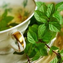 Peppermint Helps Relieving Non-Cardiac Chest Pain And Difficulty In Swallowing Food