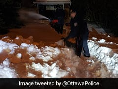 Canada Police Rescue Man Trapped At Home For Weeks By Snow