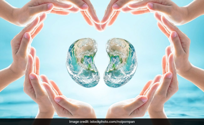 World Kidney Day: Important Facts About Renal Health You Must Not Ignore