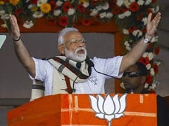 "Vote For ""Double-Engine"" BJP Government At Centre, State: PM In Odisha"