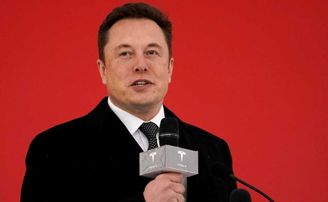 Musk's Model Y Debut Leads to Tesla's Worst Post-Party Rout