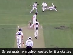 Sheffield Shield: Matthew Wade's Never Seen Before Catch Takes Teamwork To A Whole New Level