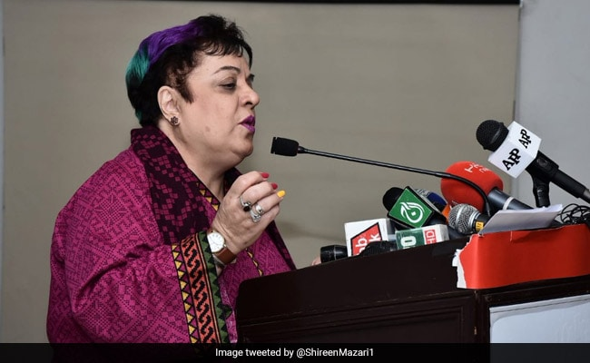 Pakistan Minister Brands US Envoy 'Little Pygmy' In Twitter Row