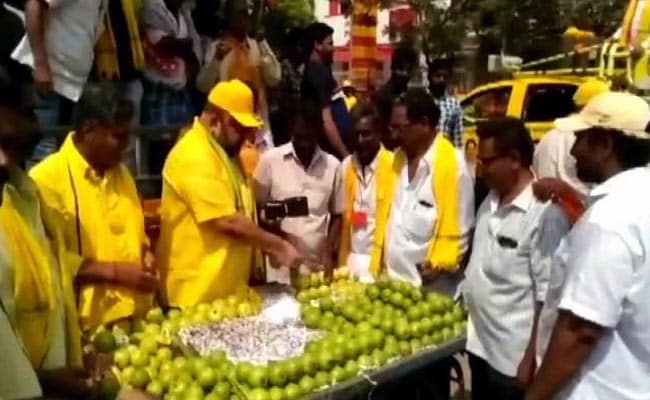 TDP Leader Sells Guavas For Support In Lok Sabha Election
