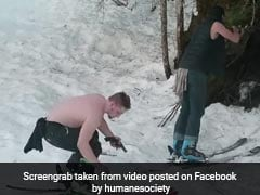 Video Captures Father, Son Brutally Killing Bear And Her Cubs In Alaska
