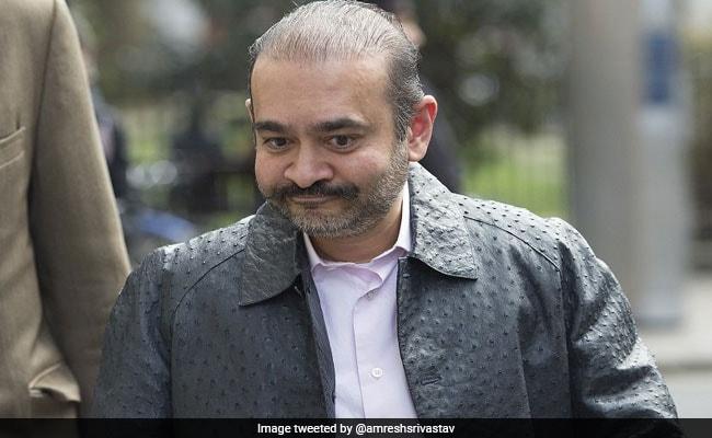 भगोड़े नीरव मोदी पर घमासान, बीजेपी बोली- 'उल्टा चोर चौकीदार को डांटे'