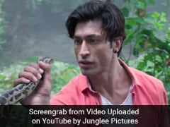 <i>Junglee</i> Movie Review: Vidyut Jammwal Only Bright Spot In Pulp Film By Hollywood Director
