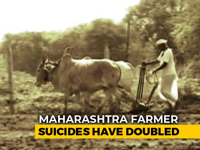 Video : Farmer Suicides Doubled In Maharashtra In Last 4 Years, Shows RTI Reply