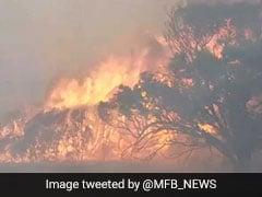 ऑस्ट्रेलिया के जंगल में लगी भयंकर आग तो आगे आए जूही चावला के बेटे, पॉकेट मनी से दिए इतने रुपये