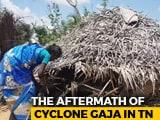 Video : Bonded Labour, Trafficking 4 Months After Cyclone Gaja Devastation