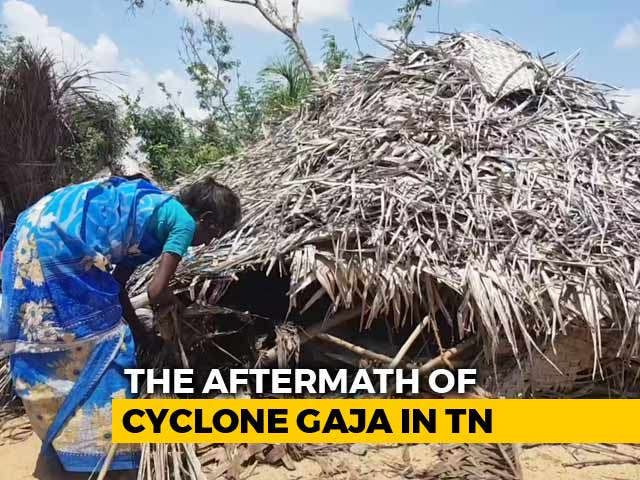 Video : Bonded Labour, Trafficking 4 Months After Cyclone Gaja Devastation