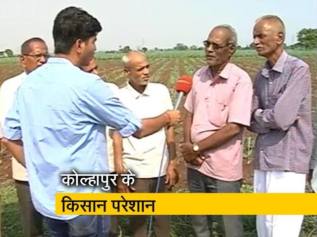 Videos : महाराष्ट्र के कोल्हापुर के किसान परेशान