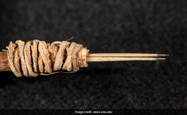 Oldest Tattoo Tool, Made Around 2,000 Years Ago, Found In US