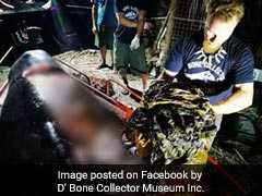 rgoivago_philippines-whale-with-40-kg-plastic-facebook_120x90_18_March_19.jfif