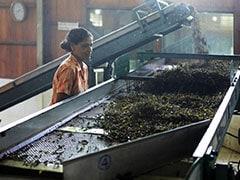 देश में श्रम बल में महिलाओं की भागीदारी गिरकर 26 फीसदी हुई : रिपोर्ट
