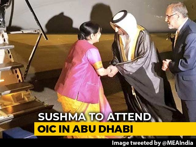 Video : Sushma Swaraj Arrives In Abu Dhabi To Attend Islamic Nations' Conclave