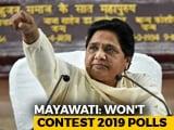 Mayawati Says She Will Not Contest Lok Sabha Elections