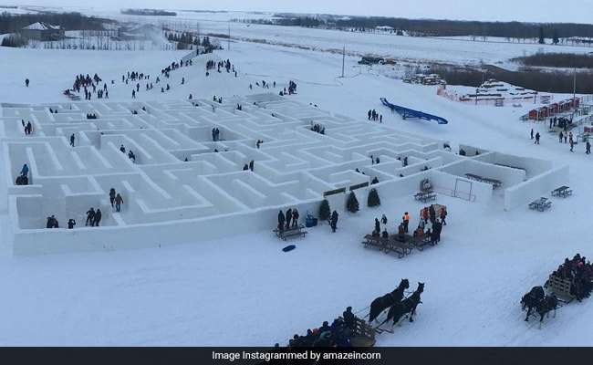 A-maze-ing: Couple Builds World's Largest Snow Maze