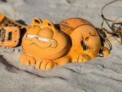 """Mystery Of """"Garfield"""" Phones Washing Up On Beach Solved After 30 Years"""