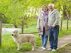 Dog-Walking Can Be Hazardous For Seniors, Study Suggests
