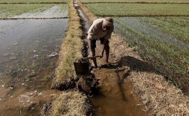 क्यों ग़ायब हैं किसानों के मुद्दे किसानों के ही देश से...?