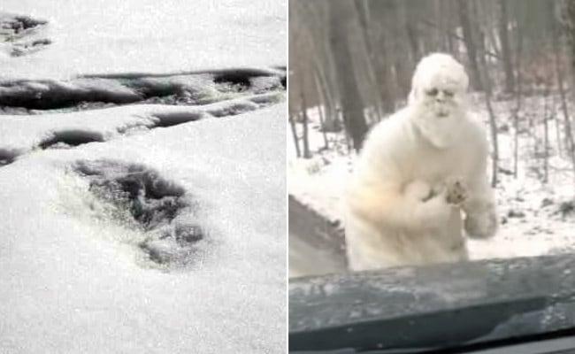 सेना को हिमालय पर मिले 'हिम मानव' के पदचिन्ह, तो बॉलीवुड एक्ट्रेस ने पोस्ट कर डाला Yeti का हैरतअंगेज Video
